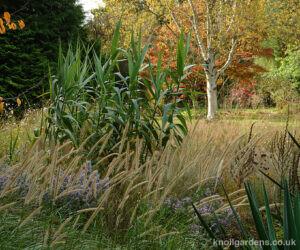 Gravel Garden at Knoll