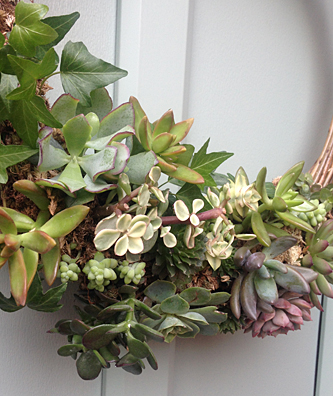 Succulents wreath